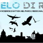 #IlCieloDiRoma