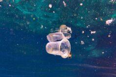 """Il Presidente Tajani: """"Se non agiamo subito, entro il 2050 nei mari avremo più plastica che pesce"""""""