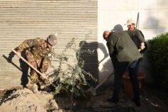 Domenica delle Palme in Afghanistan: a Kabul la comunità cristiana pianta un ulivo simbolo di pace
