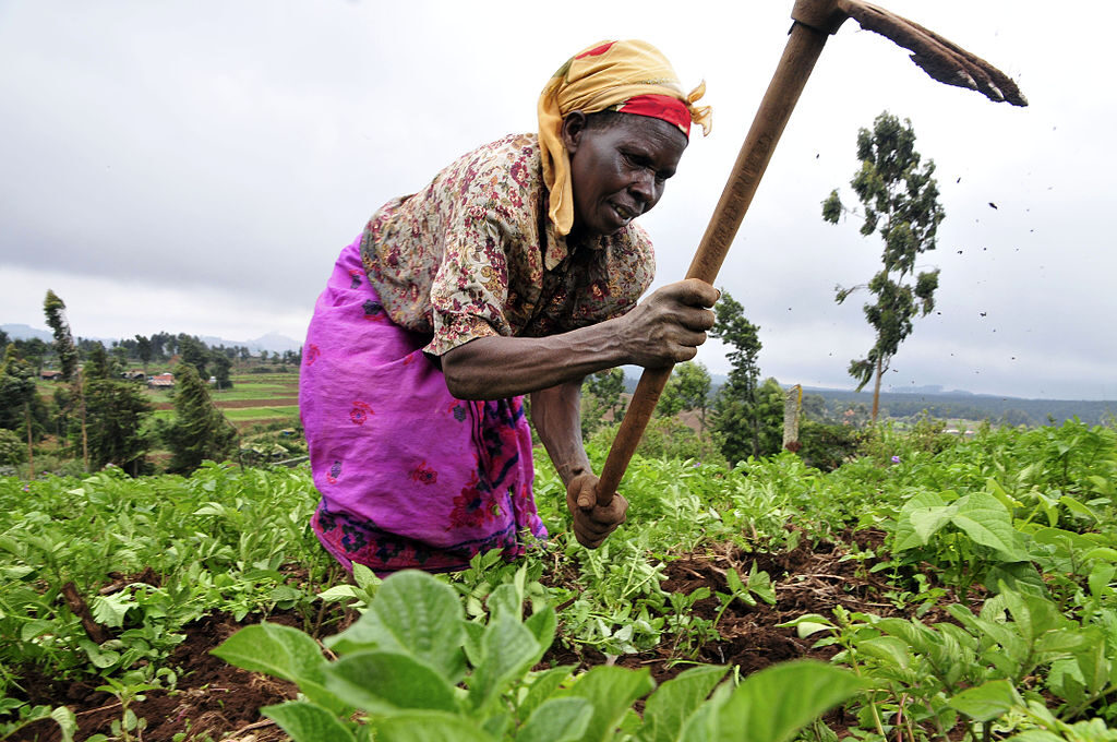 Pic by Neil Palmer (CIAT). A farmer at work in Kenya's Mount Kenya region.